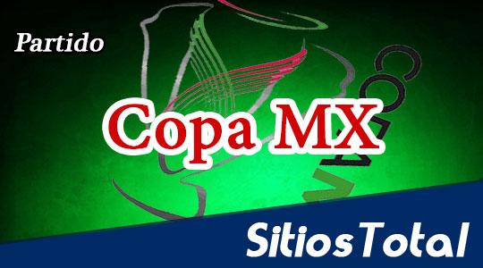 Leones Negros vs Dorados de Sinaloa en Vivo – Copa MX – Martes 18 de Agosto del 2015