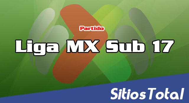 Necaxa Sub 17 vs Toluca Sub 17 en Vivo – Liga MX Sub 17 Jornada 10 del Torneo de Clausura 2019  – Sábado 9 de Marzo del 2019