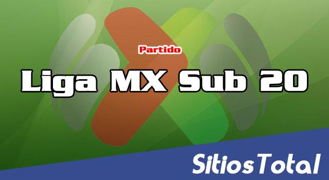 Necaxa vs América en Vivo – Liga MX Sub 20 Jornada 3 del Torneo de Clausura 2020  – Viernes 7 de Agosto del 2020