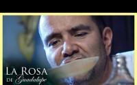 Resumen La Rosa de Guadalupe – Capitulo Un buen día para amar – Jueves 8 de Abril del 2021