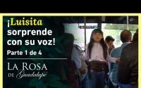 Resumen La Rosa de Guadalupe – Capitulo Luisita se gana la vida cantando en los microbuses! – Miércoles 22 de Septiembre del 2021