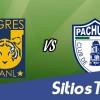 Ver Tigres vs Pachuca en Vivo – Sábado 29 de Noviembre del 2014