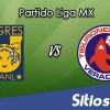 Ver Tigres vs Veracruz en Vivo – Online, Por TV, Radio en Linea, MxM – AP 2016 – Liga MX