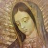 Especial Mañanitas a la Virgen de Guadalupe por Telemundo en Vivo – Martes 11 de Diciembre del 2018
