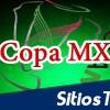 Lobos BUAP vs Puebla en Vivo – Copa MX – Martes 25 de Agosto del 2015