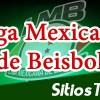 Leones de Yucatán vs Tigres de Quintana Roo en Vivo – Partido 7 – Final Zona Sur – Liga Mexicana de Beisbol – Lunes 18 de Junio del 2018