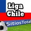 Palestino vs Santiago Wanderers Final Ida en Vivo – Miércoles 17 de Diciembre del 2014