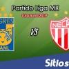 Ver Tigres vs Necaxa en Vivo – Clausura 2019 de la Liga MX