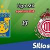 Ver Tigres vs Toluca en Vivo – Apertura 2018 de la Liga MX