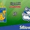 Ver Tigres vs Puebla en Vivo – Apertura 2018 de la Liga MX
