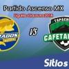 Dorados de Sinaloa vs Cafetaleros de Tapachula en Vivo – Semifinales Vuelta – Ascenso MX – Sábado 21 de Abril del 2018