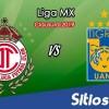Ver Toluca vs Tigres en Vivo – Clausura 2019 de la Liga MX