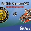 Leones Negros vs Alebrijes de Oaxaca en Vivo – Semifinales Vuelta – Ascenso MX – Domingo 22 de Abril del 2018