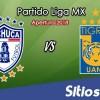 Ver Pachuca vs Tigres en Vivo – Apertura 2018 de la Liga MX