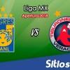Ver Tigres vs Veracruz en Vivo – Apertura 2018 de la Liga MX