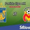 Ver Tigres vs Monarcas Morelia en Vivo – Clausura 2019 de la Liga MX