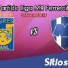 Ver Tigres vs Monterrey en Vivo – Final Ida – Liga MX Femenil – Clausura 2019 – Viernes 10 de Mayo del 2019