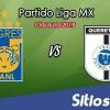 Ver Tigres vs Querétaro en Vivo – Clausura 2019 de la Liga MX