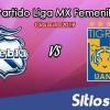 Ver Puebla vs Tigres en Vivo – Ida Cuartos de Final – Liga MX Femenil – Clausura 2019 – Jueves 25 de Abril del 2019