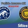 Ver Celaya vs Leones Negros en Vivo – Ascenso MX en su Torneo de Clausura 2019
