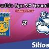 Ver Tigres vs Puebla en Vivo – Partido de Vuelta – Cuartos de Final – Liga MX Femenil – Clausura 2019 – Lunes 29 de Abril del 2019