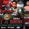 Yesenia Gomez vs Erika Hanawa en Vivo – Box – Sábado 16 de Febrero del 2019