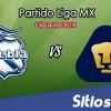 Ver Puebla vs Pumas en Vivo – Clausura 2019 de la Liga MX