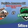 Alebrijes de Oaxaca vs Cafetaleros de Tapachula en Vivo – Final Vuelta – Ascenso MX – Sábado 12 de Mayo del 2018