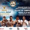 "Julio ""Pollito"" Ceja vs Franklin Manzanilla en Vivo – Box – Sábado 26 de Mayo del 2018"