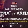 Sandra Robles vs Arely Valente en Vivo – Box – Sábado 16 de Febrero del 2019