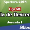 Tabla del Descenso Liga MX hasta la Jornada 1 del Apertura 2018