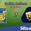 Tigres vs Pumas en Vivo – Partido Amistoso – Sábado 17 de Noviembre del 2018