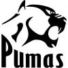 Razones por las que Pumas debe ganar al América