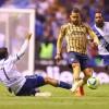 Pumas a terminado con la liga en Clausura 2019