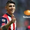 Televisa transmitirá partidos de Chivas sin pagar nada